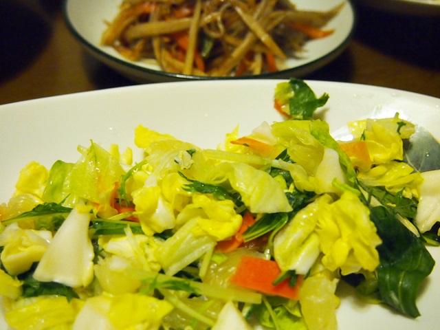 野菜サラダときんぴら