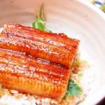 【食】うなぎ丼、卵焼、スイカ!