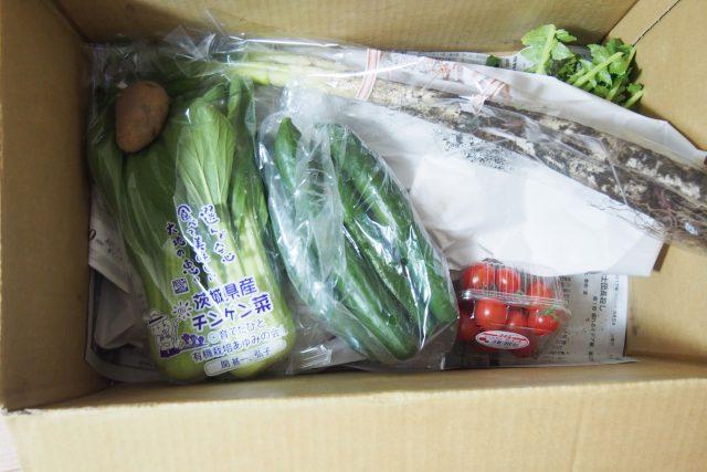 らでぃっしゅぼーやのぱれっとの野菜