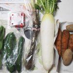 野菜好きな人におすすめの野菜宅配らでぃっしゅぼーや「ぱれっと」届いた件