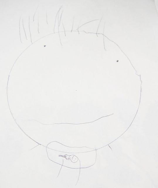 次女3歳半の描いた絵