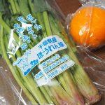 らでぃっしゅぼーやのサンプル野菜